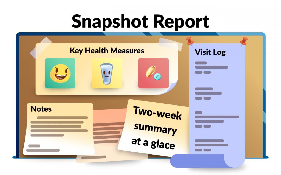 The Snapshot Report