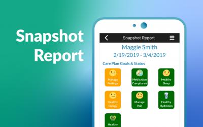 Snapshot Report